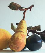Yellow pear on a twig from Penkridge Ceramics