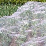 Agralan Enviromesh. Courtesy of www.gardening-naturally