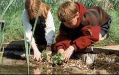 Children find ponds fascinating. Photo courtesy of Avon Wildlife Trustfind