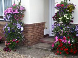 Mrs-Beeton-2nd-Bury-in-Bloom2-1024x768