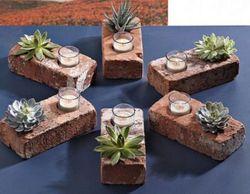 Brick Succulent Planters featured on Nosh