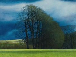 Winter Beeches by Annie Ovenden