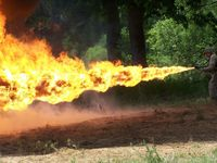 Overkill on the weed burning stick