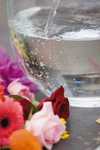 Make sure you put cut flowers in a clean container, with clean waterclean_water_in_vase