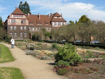 In the Botanische Garten