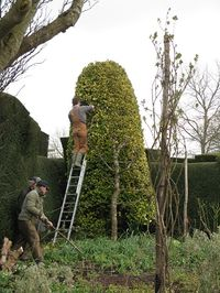 Hard at work preparing Great Dixter for the spring opening March 2013
