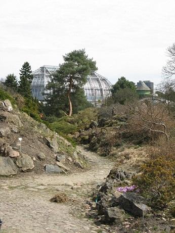 The Rock Garden, Botanical Garden, Berlin
