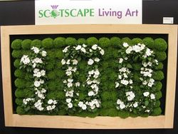 Scotscape living pictures. Chelsea Flower Show 2013