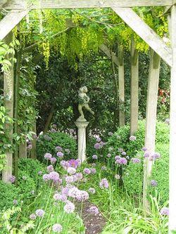 Laburnum pergola with allium and statue, Rose Cottage, NGS