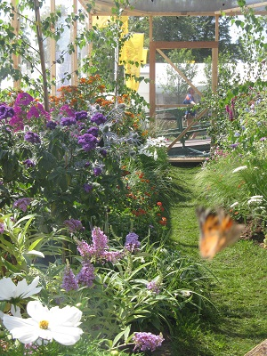 Native butterfly garden, Hampton Court Flower Show 2013
