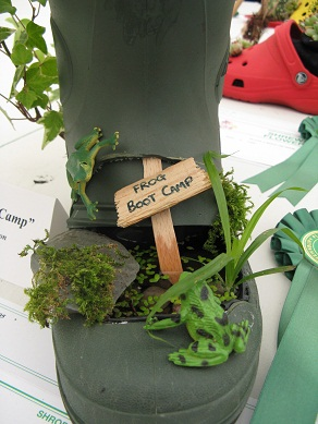 Frog Boot Camp, Plant a Shoe or Boot Class, Shrewsbury Flower Show, 2013