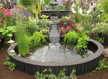 Prize-winning stand from Plant Heritage, Floral marquee, Shrewsbury Flower Show, 2013