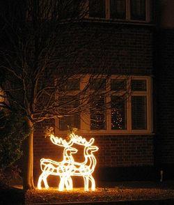 Reindeer tableau for Christmas