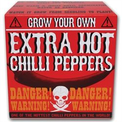 Grow-your-own-extra-hot-chilli-peppers