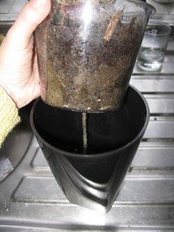 Inside of Self-watering Glossy pot