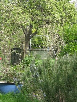 A view without fences in our back garden