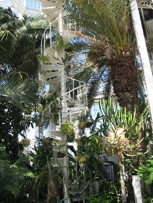 Spiral staircase, Palm House, Sefton Park, Liverpool