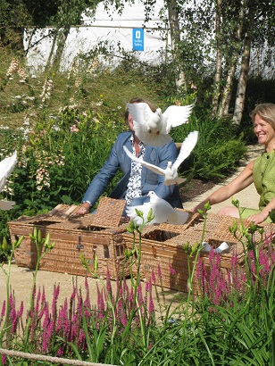Doves, Quiet Mark Garden, Hampton Court Flower Show, 2014