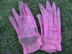 Town and Country Aquasure gardening gloves for women