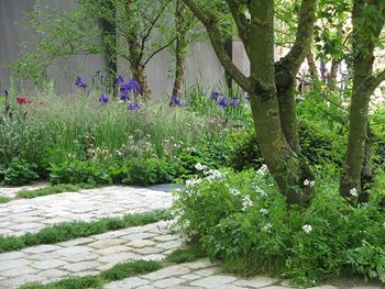 No Man's Land, Chelsea Flower Show, 2014. Middle section, Lost Gardens, morphing into third section, Waterside, where mine crater made wildlife haven