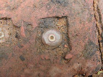 Bullet embedded in terracotta tile, The Potter's Garden, Chelsea Flower Show, 2014