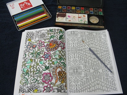 Glorious Gardens Colouring Book For Grown Ups