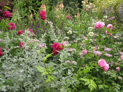 Planting on the M&G Retreat Garden, designed by Jo Thompson, Chelsea 2015
