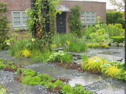 Sean Murray's Great Chelsea Garden Challenge garden, Chelsea 2015