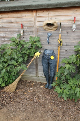 Invisible Man Scarecrow, Mr Fothergill's staff competition 2015