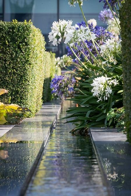 Nomura International Gardens 2 reduced