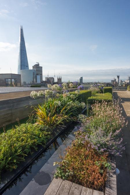 Nomura International Terrace Garden reduced