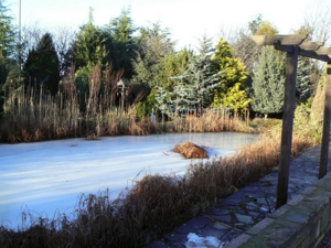 Frozen_ornamental_pond_-_geograph.org.uk_-_1670837