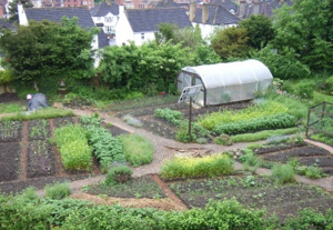 GREEN, the Garden for Research, Experiential E and Nutrition