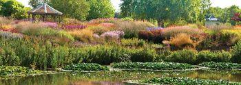 Millennium-garden-main-3col40k_jpg_960x340_q85