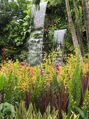 The Hidden Beauty of Kranji, by John Tan and Raymond Toh, RHS Chelsea 2015