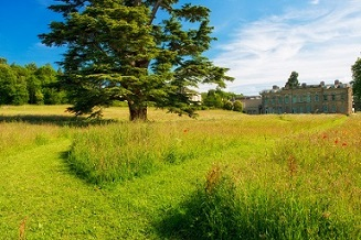 The Mown Parterre Copyright Compton Verney Photograph by Stuart Thomas (small)