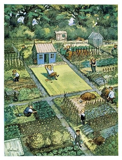 Thelwell Vintage-Gardening-Allotments-Cartoons-Punch-Magazine-1954.05.31.2.SUM