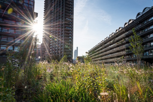 Beech Gardens, Barbican Estate 2