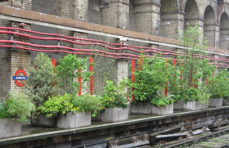 Barbican Underground Station Pop-up garden, Open Garden Squares weekend