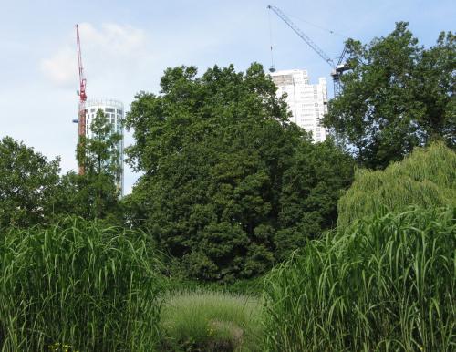 Construction near Vauxhall Park, London