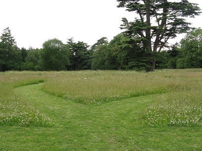 Paths carved in wildflower meadow, Compton Verney