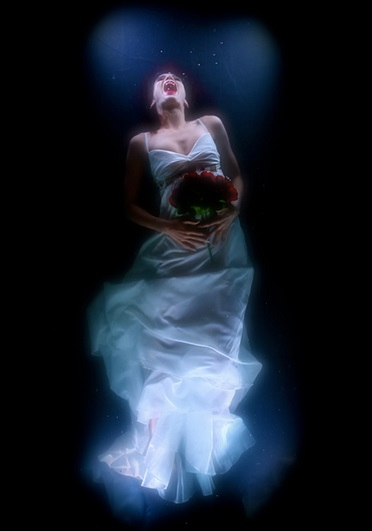 Ophelia's Ghost © Kristin and Davy McGuire