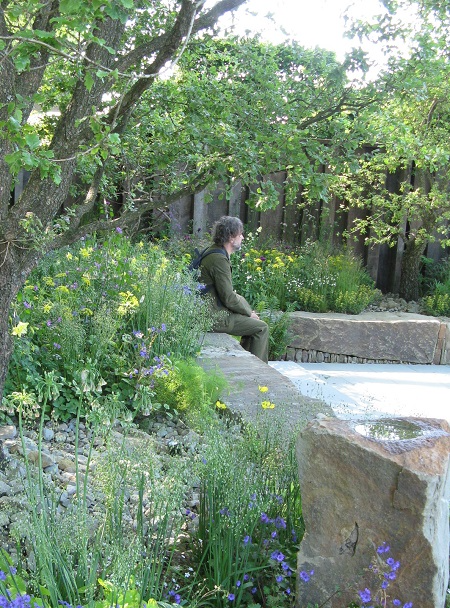 Dan Pearson enjoys Cleve West's MandG Garden, RHS Chelsea flower show, 2016, copyright Helen Gazeley